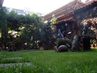 Поглед от тревата, Семеен Хотел М&С Буров Панагюрище